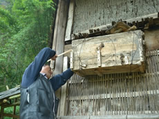 A beekeeper hangs a traditional wooden beehive.