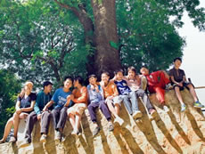 Compassionate young people from Kunming act as tree carers in a concerted effort to protect old trees.