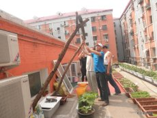 PCD supports balcony farming in four residential communities in Beijing. Members of one community start turning the public space in their residential community into a rooftop garden.