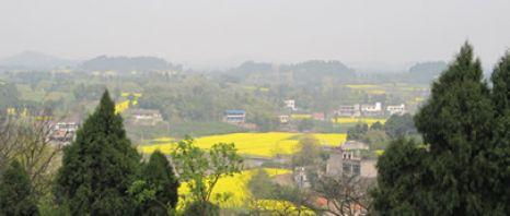 四川一個全面生態種植的村莊――雙河村的成功案例