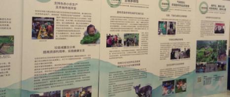 社區伙伴成立北京代表處 與政府部門良好互動